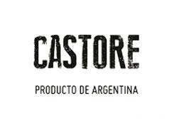 logo Castore